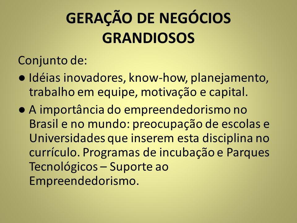 GERAÇÃO DE NEGÓCIOS GRANDIOSOS Conjunto de: Idéias inovadores, know-how, planejamento, trabalho em equipe, motivação e capital. A importância do empre