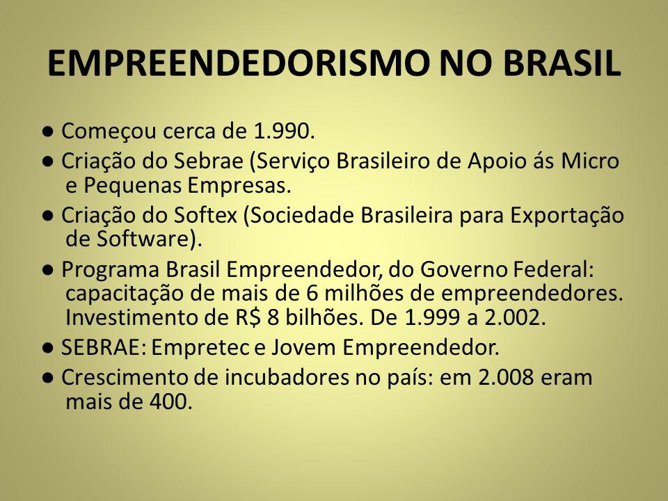 EMPREENDEDORISMO NO BRASIL Começou cerca de 1.990. Criação do Sebrae (Serviço Brasileiro de Apoio ás Micro e Pequenas Empresas. Criação do Softex (Soc
