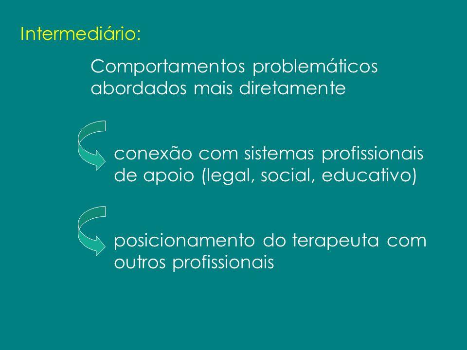 Intermediário: Comportamentos problemáticos abordados mais diretamente conexão com sistemas profissionais de apoio (legal, social, educativo) posicion