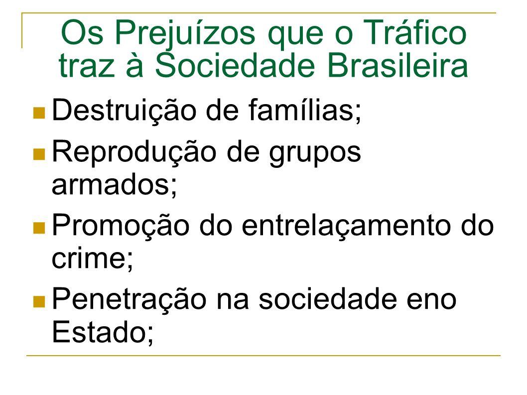 Os Prejuízos que o Tráfico traz à Sociedade Brasileira Destruição de famílias; Reprodução de grupos armados; Promoção do entrelaçamento do crime; Penetração na sociedade eno Estado;