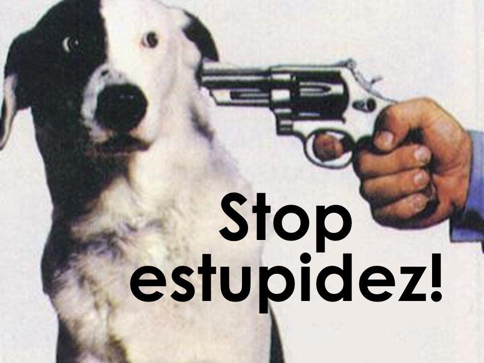 Stop estupidez!