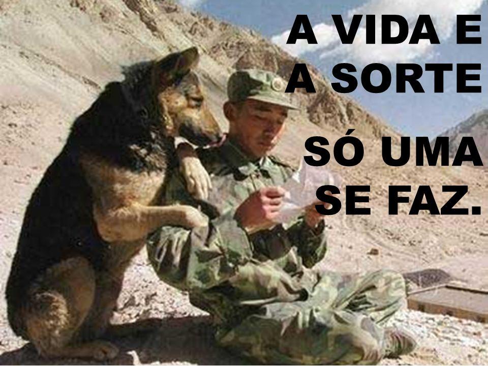 A VIDA E A SORTE SÓ UMA SE FAZ.