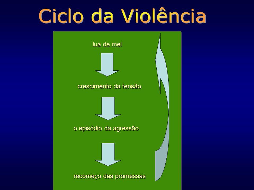Por exemplo: Violência como forma de disciplina. Mulheres que sofrem agressão e não se separam.