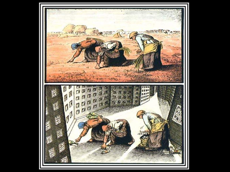 Desigualdades Sociais.