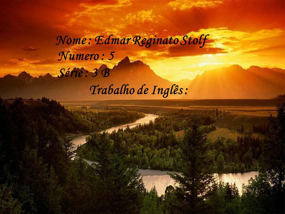 Nome : Edmar Reginato Stolf Numero : 5 Série : 3 B Trabalho de Inglês :