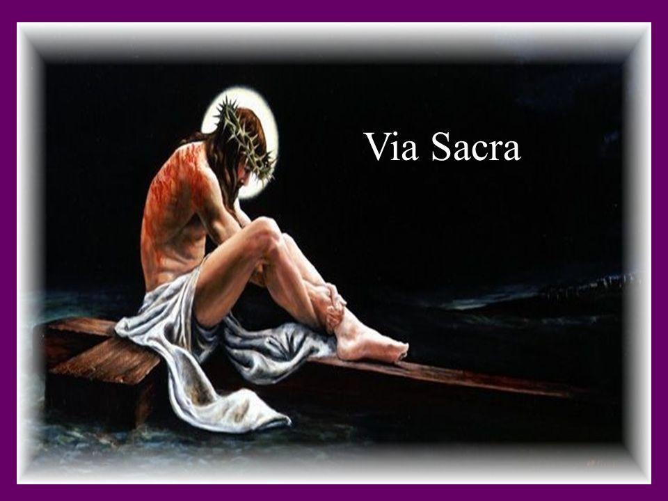 7ª Estação Jesus morre na cruz (todos) Agradecemos-Te, Senhor, e adoramos-Te porque na cruz nos mostras toda a misericórdia de Deus Pai.