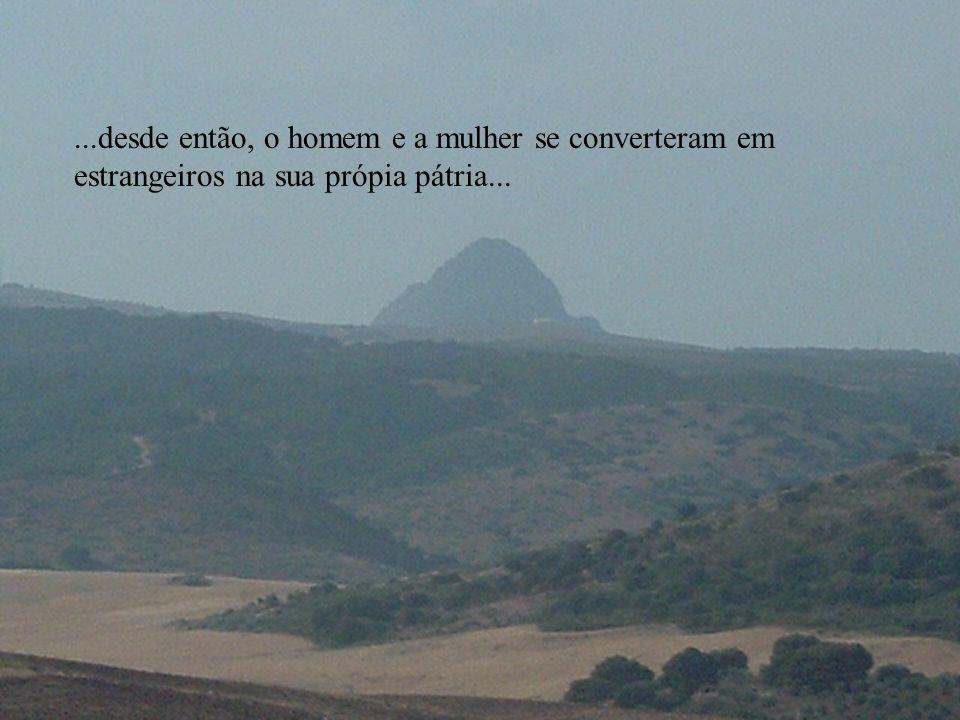 ...porém esta harmonia rompe-se quando o ser humano, seduzido pelo seu orgulho, quer suplantar o lugar de Deus...