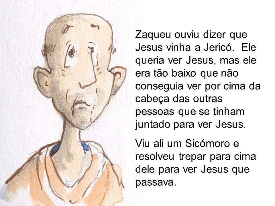 Zaqueu ouviu dizer que Jesus vinha a Jericó. Ele queria ver Jesus, mas ele era tão baixo que não conseguia ver por cima da cabeça das outras pessoas q