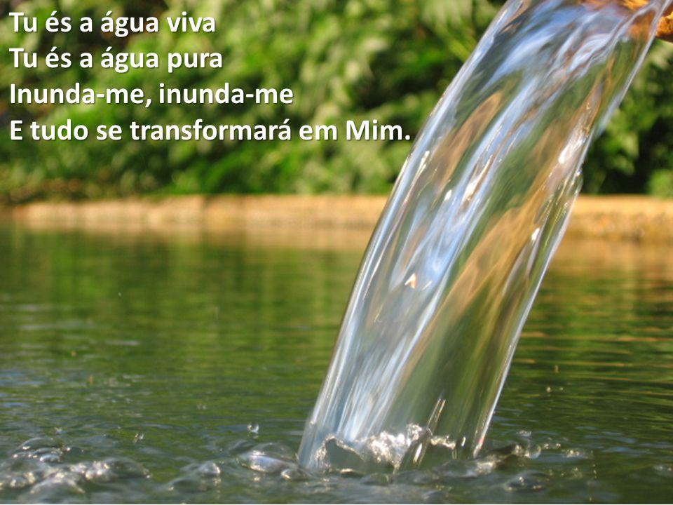Manifesta a Tua Santidade em mim Toma-me de entre a minha dispersão Recolhe-me de onde me perdi Enche-me de novo o coração!