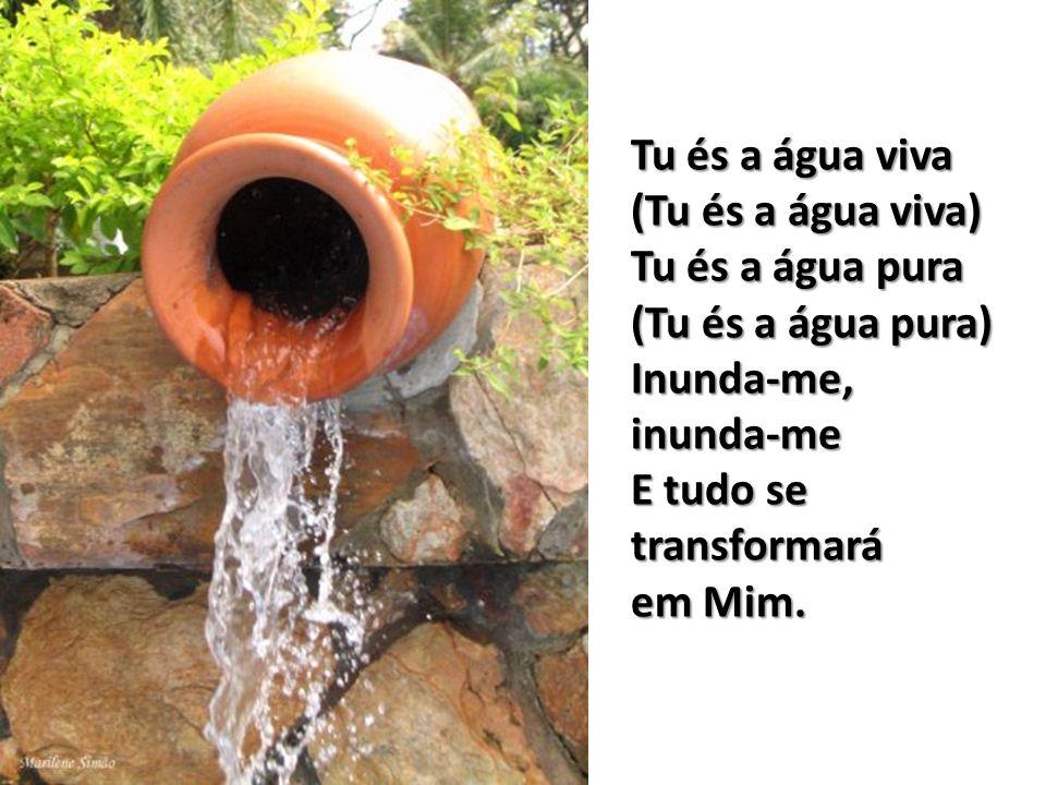 Minha terra se abrirá à Tua chuva As minhas pedras não farão mal a ninguém. Meus montes serão caminho para todos Meu pasto abundante cura será Para to
