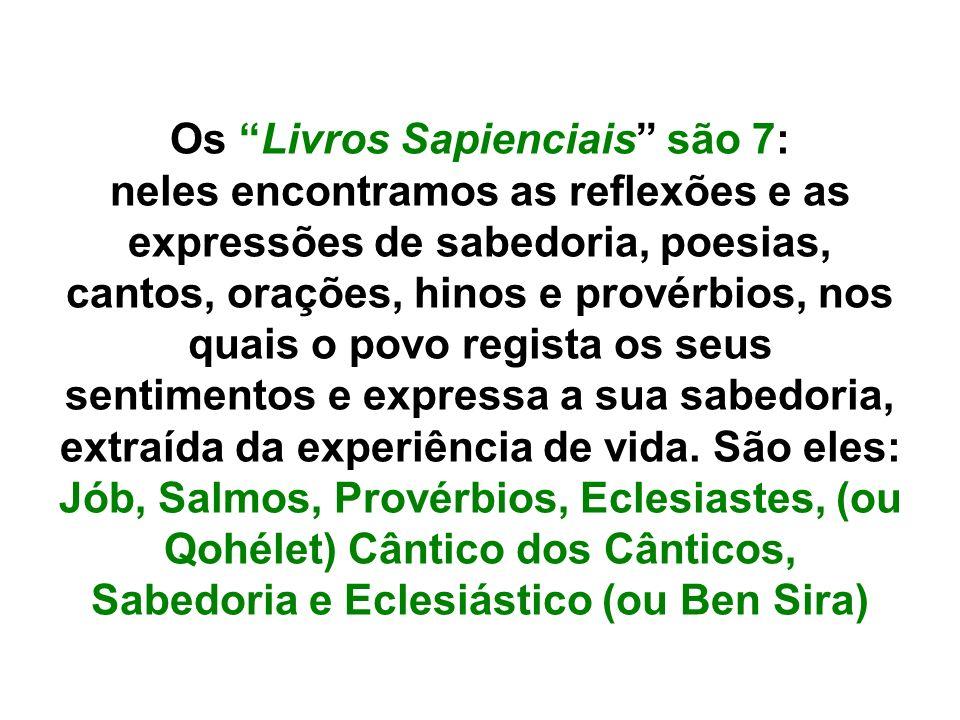 Os Livros Sapienciais são 7: neles encontramos as reflexões e as expressões de sabedoria, poesias, cantos, orações, hinos e provérbios, nos quais o po