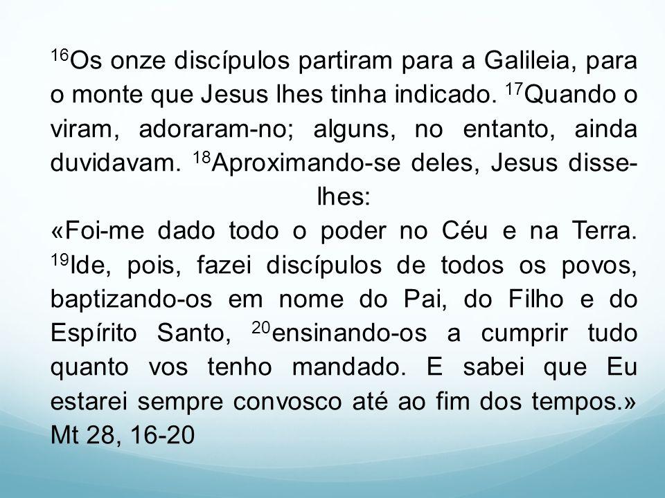 16 Os onze discípulos partiram para a Galileia, para o monte que Jesus lhes tinha indicado. 17 Quando o viram, adoraram-no; alguns, no entanto, ainda