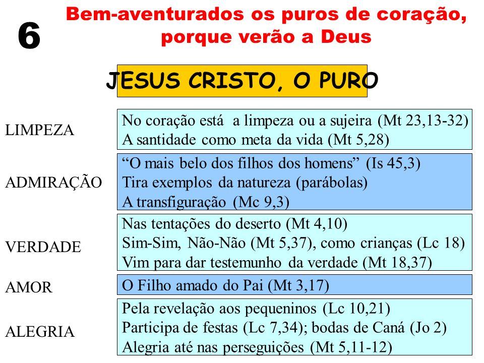 6 Bem-aventurados os puros de coração, porque verão a Deus JESUS CRISTO, O PURO LIMPEZA ADMIRAÇÃO VERDADE AMOR ALEGRIA No coração está a limpeza ou a
