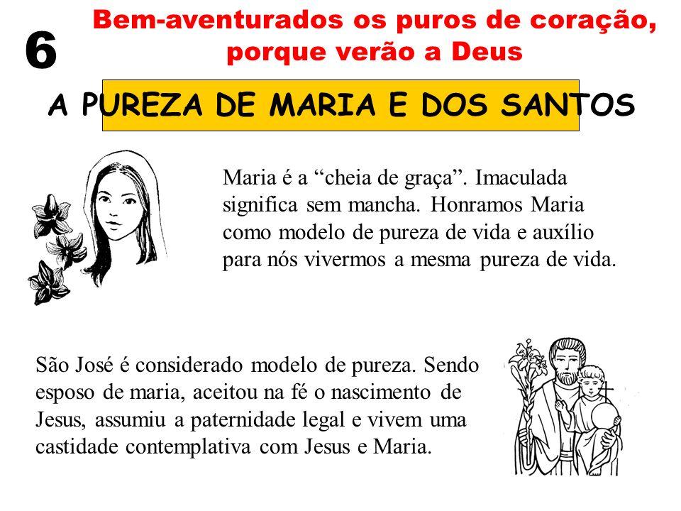 6 Bem-aventurados os puros de coração, porque verão a Deus A PUREZA DE MARIA E DOS SANTOS Maria é a cheia de graça. Imaculada significa sem mancha. Ho