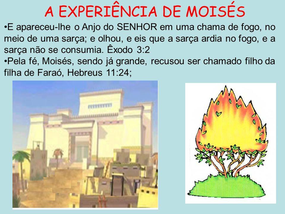A EXPERIÊNCIA DE MOISÉS E apareceu-lhe o Anjo do SENHOR em uma chama de fogo, no meio de uma sarça; e olhou, e eis que a sarça ardia no fogo, e a sarç