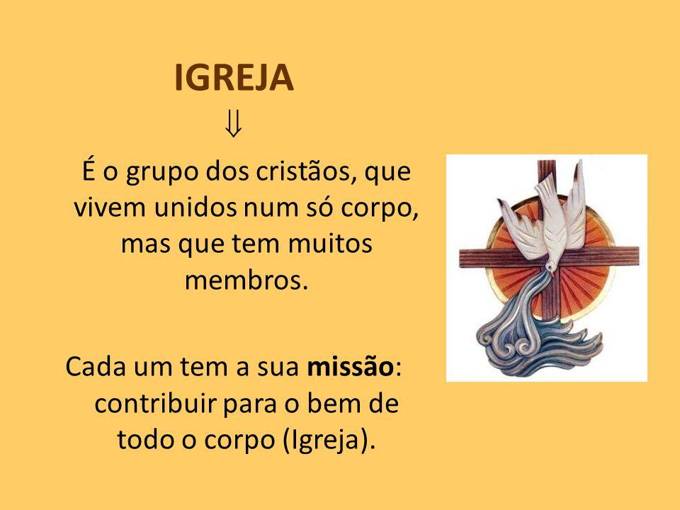 IGREJA É o grupo dos cristãos, que vivem unidos num só corpo, mas que tem muitos membros. Cada um tem a sua missão: contribuir para o bem de todo o co