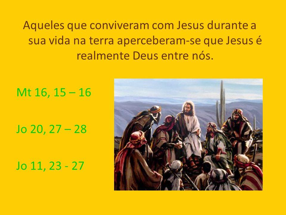 Aqueles que conviveram com Jesus durante a sua vida na terra aperceberam-se que Jesus é realmente Deus entre nós. Mt 16, 15 – 16 Jo 20, 27 – 28 Jo 11,