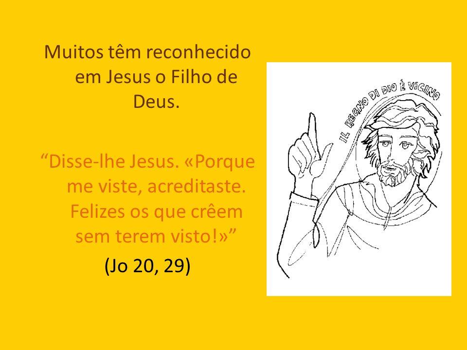 Muitos têm reconhecido em Jesus o Filho de Deus. Disse-lhe Jesus. «Porque me viste, acreditaste. Felizes os que crêem sem terem visto!» (Jo 20, 29)
