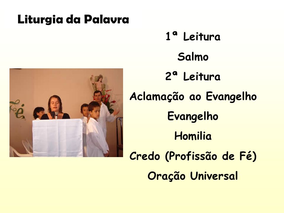 1ª Leitura Salmo 2ª Leitura Aclamação ao Evangelho Evangelho Homilia Credo (Profissão de Fé) Oração Universal Liturgia da Palavra