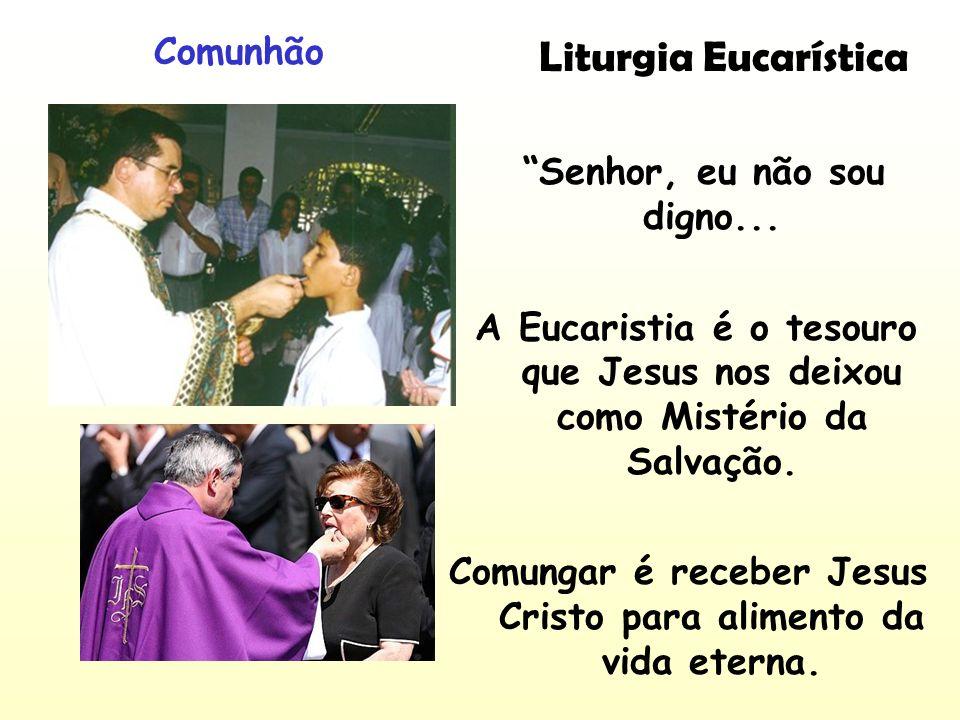 Liturgia Eucarística Comunhão Senhor, eu não sou digno... A Eucaristia é o tesouro que Jesus nos deixou como Mistério da Salvação. Comungar é receber