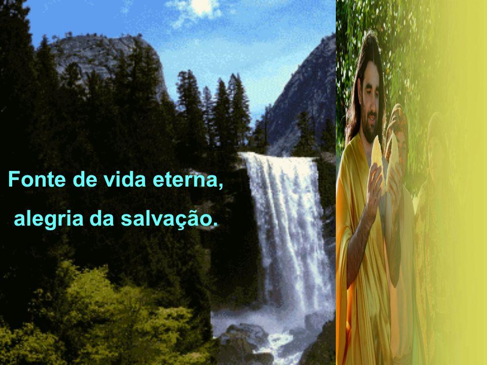 E acontece a beleza suprema da comunhão Fonte de vida eterna alegria da salvação E acontece a beleza suprema da comunhão Fonte de vida eterna alegria da salvação