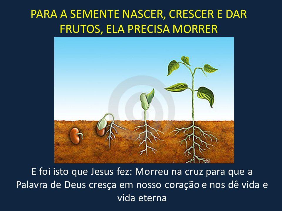 PARA A SEMENTE NASCER, CRESCER E DAR FRUTOS, ELA PRECISA MORRER E foi isto que Jesus fez: Morreu na cruz para que a Palavra de Deus cresça em nosso co