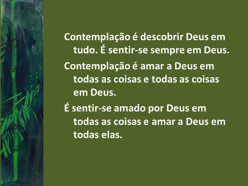 Contemplação é descobrir Deus em tudo.É sentir-se sempre em Deus.