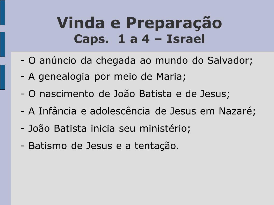 Vinda e Preparação Caps. 1 a 4 – Israel - O anúncio da chegada ao mundo do Salvador; - A genealogia por meio de Maria; - O nascimento de João Batista