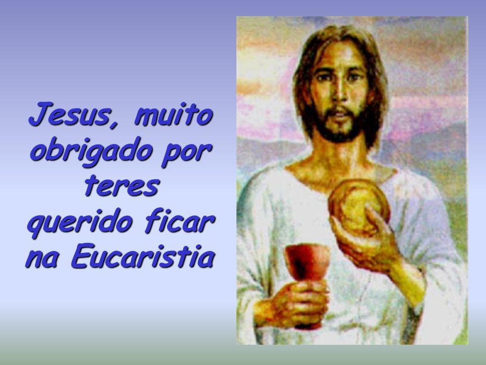 Jesus, muito obrigado por teres querido ficar na Eucaristia