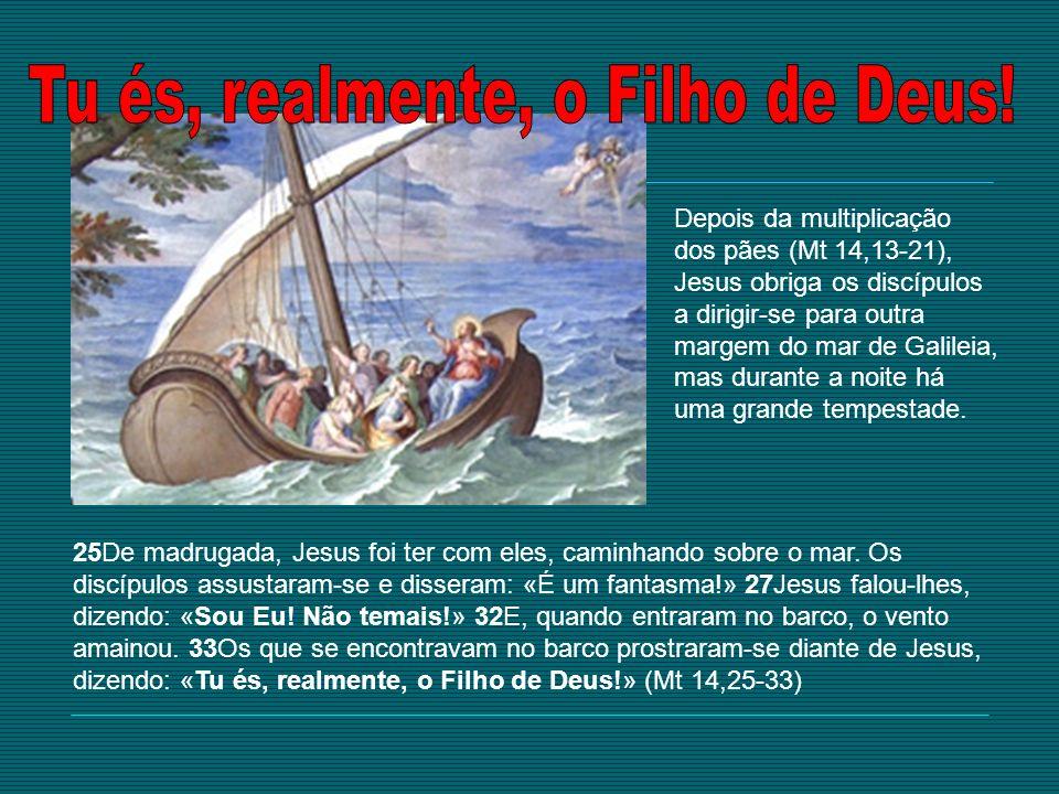 25De madrugada, Jesus foi ter com eles, caminhando sobre o mar. Os discípulos assustaram-se e disseram: «É um fantasma!» 27Jesus falou-lhes, dizendo: