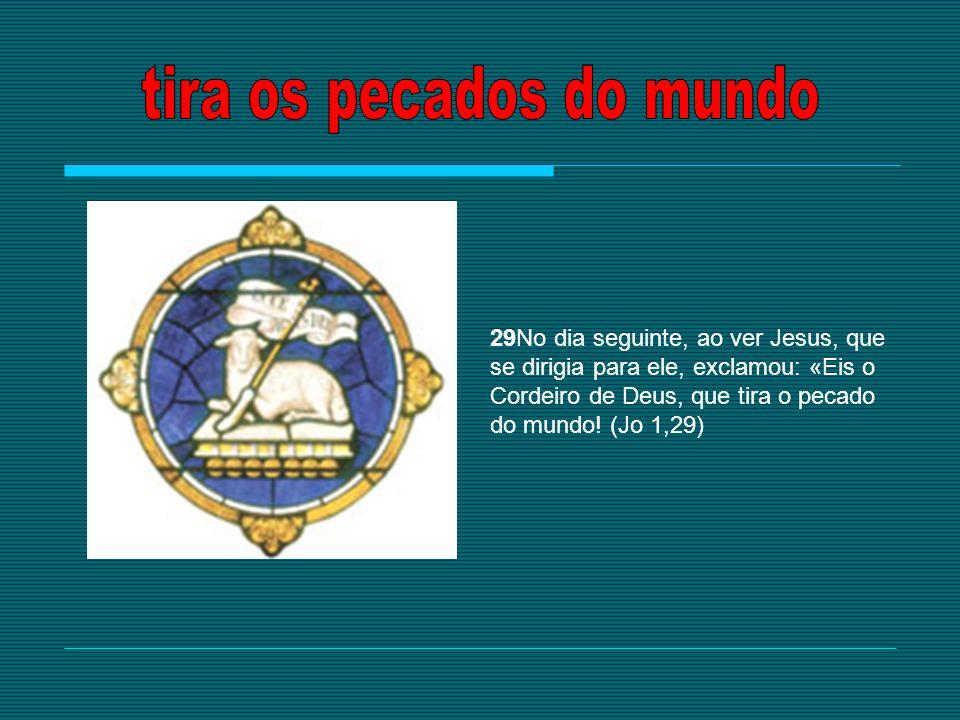 29No dia seguinte, ao ver Jesus, que se dirigia para ele, exclamou: «Eis o Cordeiro de Deus, que tira o pecado do mundo! (Jo 1,29)