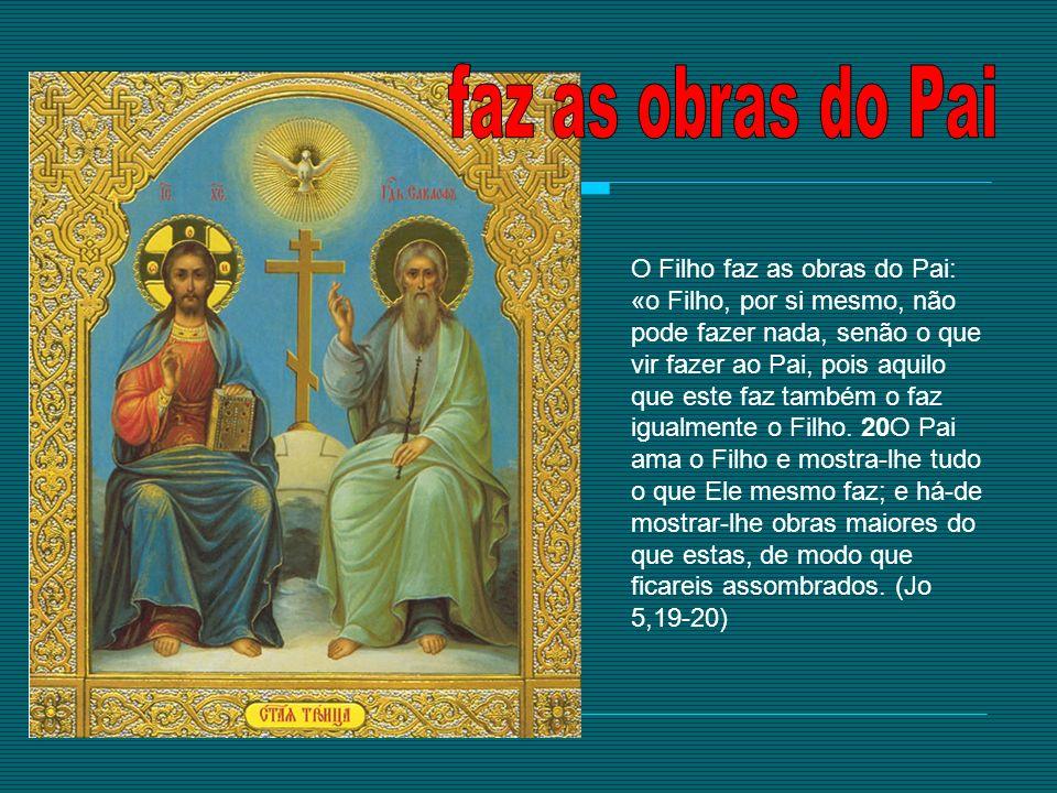 O Filho faz as obras do Pai: «o Filho, por si mesmo, não pode fazer nada, senão o que vir fazer ao Pai, pois aquilo que este faz também o faz igualmen