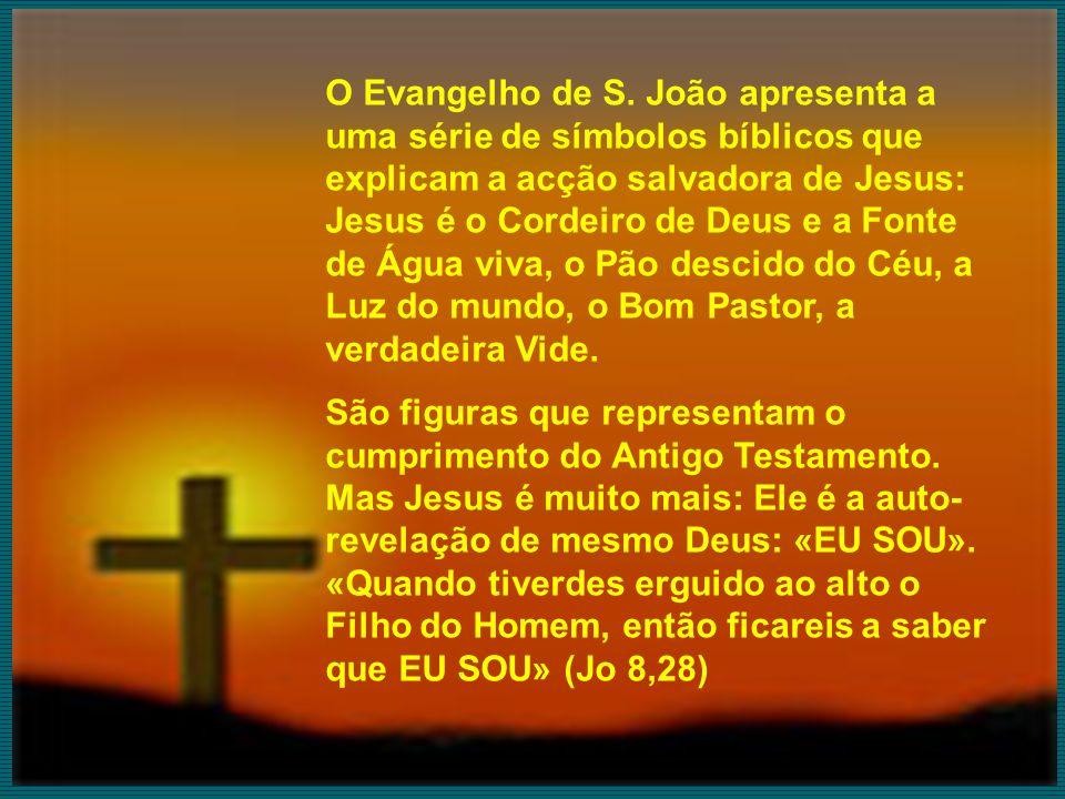 O Evangelho de S. João apresenta a uma série de símbolos bíblicos que explicam a acção salvadora de Jesus: Jesus é o Cordeiro de Deus e a Fonte de Águ