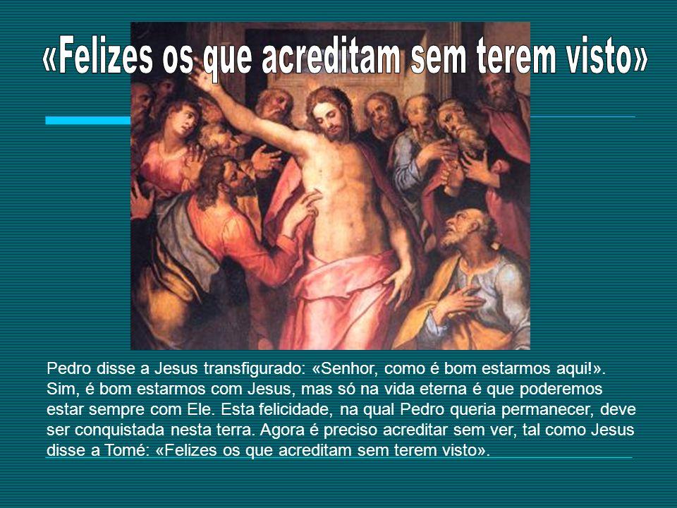 Pedro disse a Jesus transfigurado: «Senhor, como é bom estarmos aqui!». Sim, é bom estarmos com Jesus, mas só na vida eterna é que poderemos estar sem