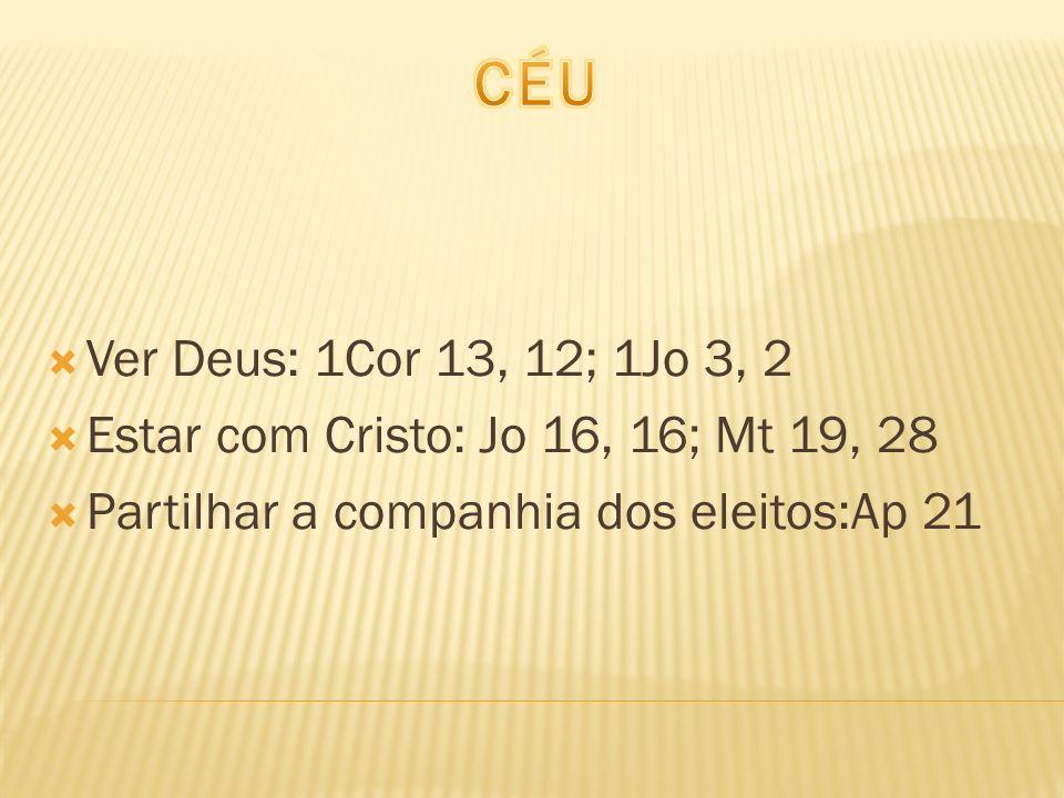Ver Deus: 1Cor 13, 12; 1Jo 3, 2 Estar com Cristo: Jo 16, 16; Mt 19, 28 Partilhar a companhia dos eleitos:Ap 21