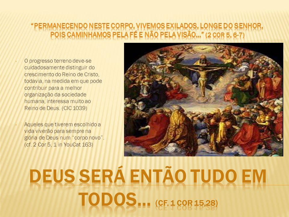O progresso terreno deve-se cuidadosamente distinguir do crescimento do Reino de Cristo, todavia, na medida em que pode contribuir para a melhor organ