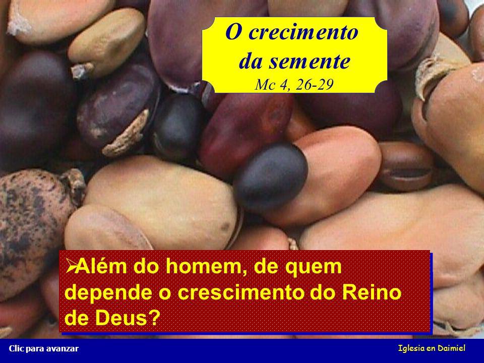 O crescimento da semente Mc 4, 26-29 Iglesia en Daimiel Clic para avançar Porque a terra produz por si, primeiro o caule, depois a espiga; e quando o