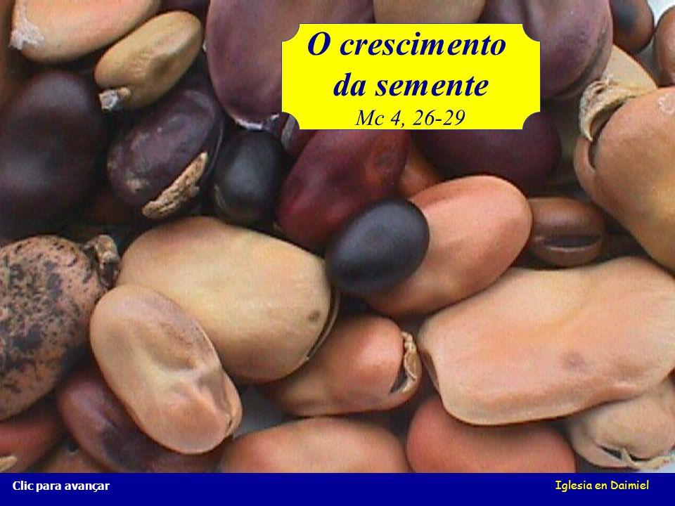 Iglesia en Daimiel O crescimento da semente Mc 4, 26-29 Clic para avançar