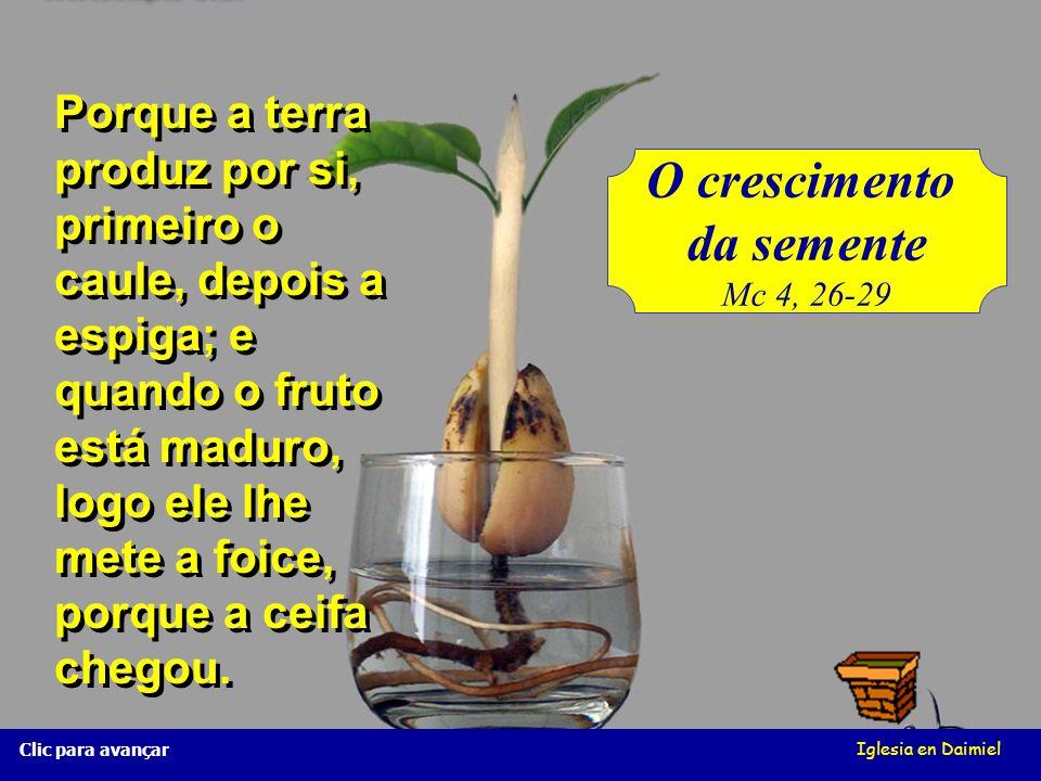 O crescimento da semente Mc 4, 26-29 Iglesia en Daimiel Clic para avançar Porque a terra produz por si, primeiro o caule, depois a espiga; e quando o fruto está maduro, logo ele lhe mete a foice, porque a ceifa chegou.