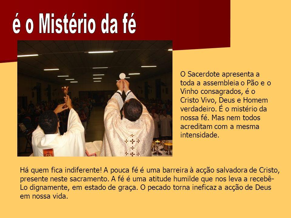 O Sacerdote apresenta a toda a assembleia o Pão e o Vinho consagrados, é o Cristo Vivo, Deus e Homem verdadeiro.