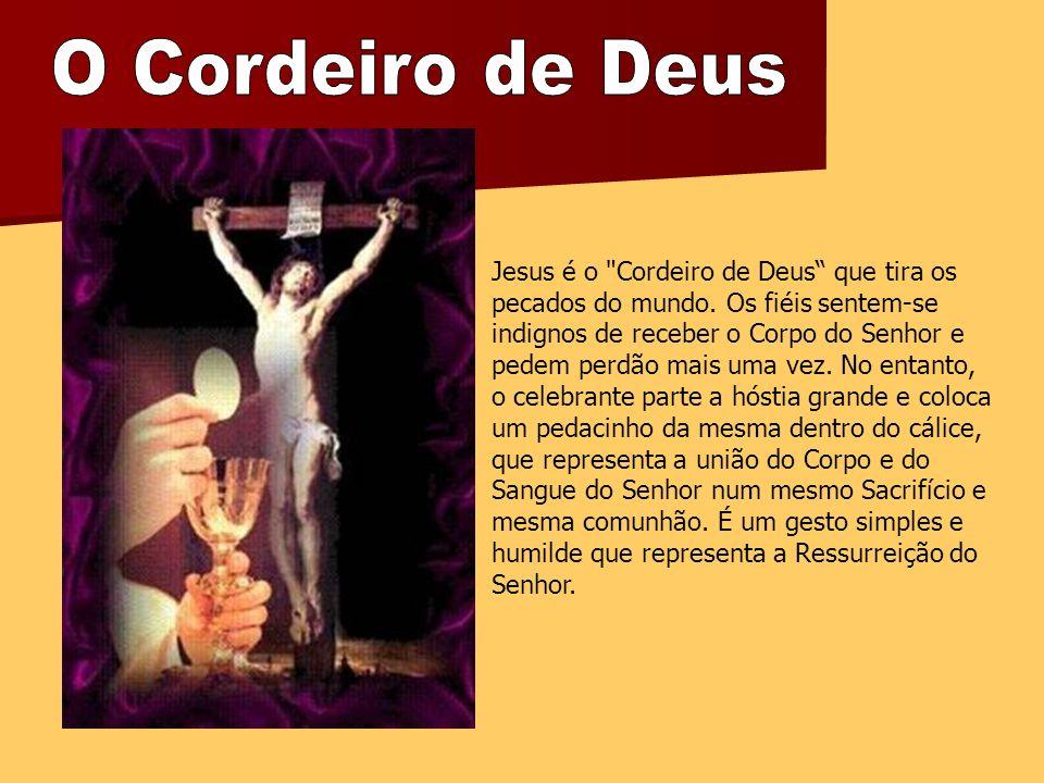 Jesus é o Cordeiro de Deus que tira os pecados do mundo.