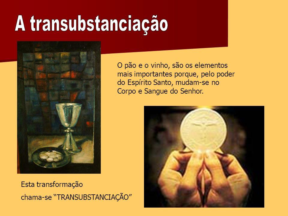 O pão e o vinho, são os elementos mais importantes porque, pelo poder do Espírito Santo, mudam-se no Corpo e Sangue do Senhor.