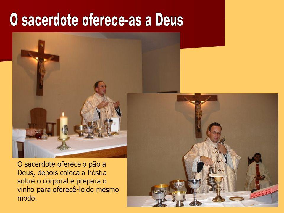 O sacerdote oferece o pão a Deus, depois coloca a hóstia sobre o corporal e prepara o vinho para oferecê-lo do mesmo modo.