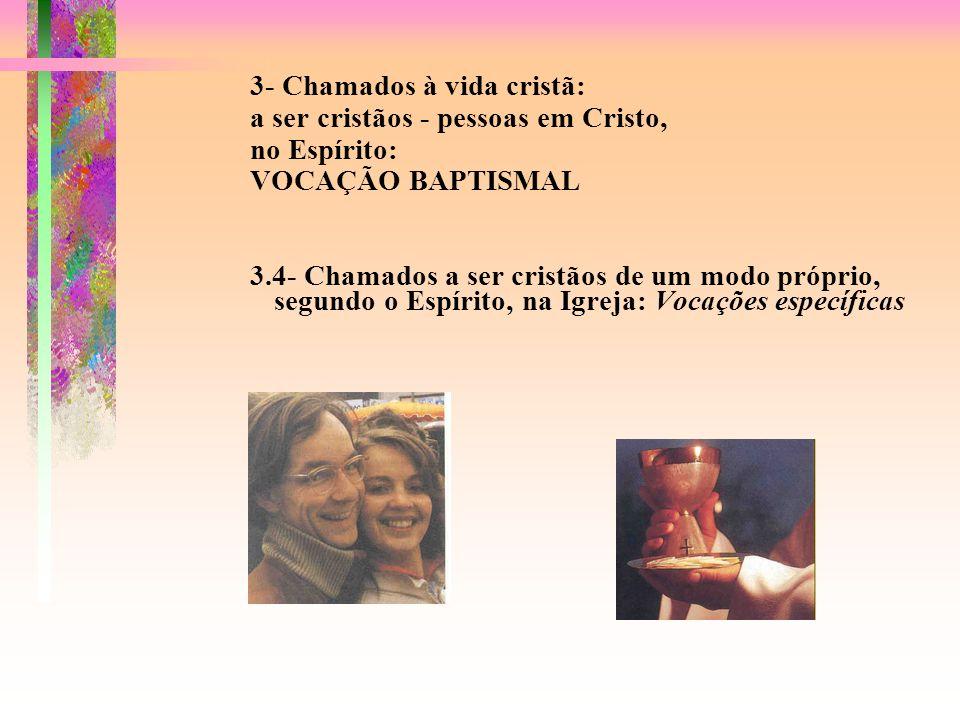 3- Chamados à vida cristã: a ser cristãos - pessoas em Cristo, no Espírito: VOCAÇÃO BAPTISMAL 3.4- Chamados a ser cristãos de um modo próprio, segundo o Espírito, na Igreja: Vocações específicas