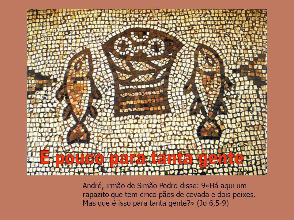 André, irmão de Simão Pedro disse: 9«Há aqui um rapazito que tem cinco pães de cevada e dois peixes. Mas que é isso para tanta gente?» (Jo 6,5-9)