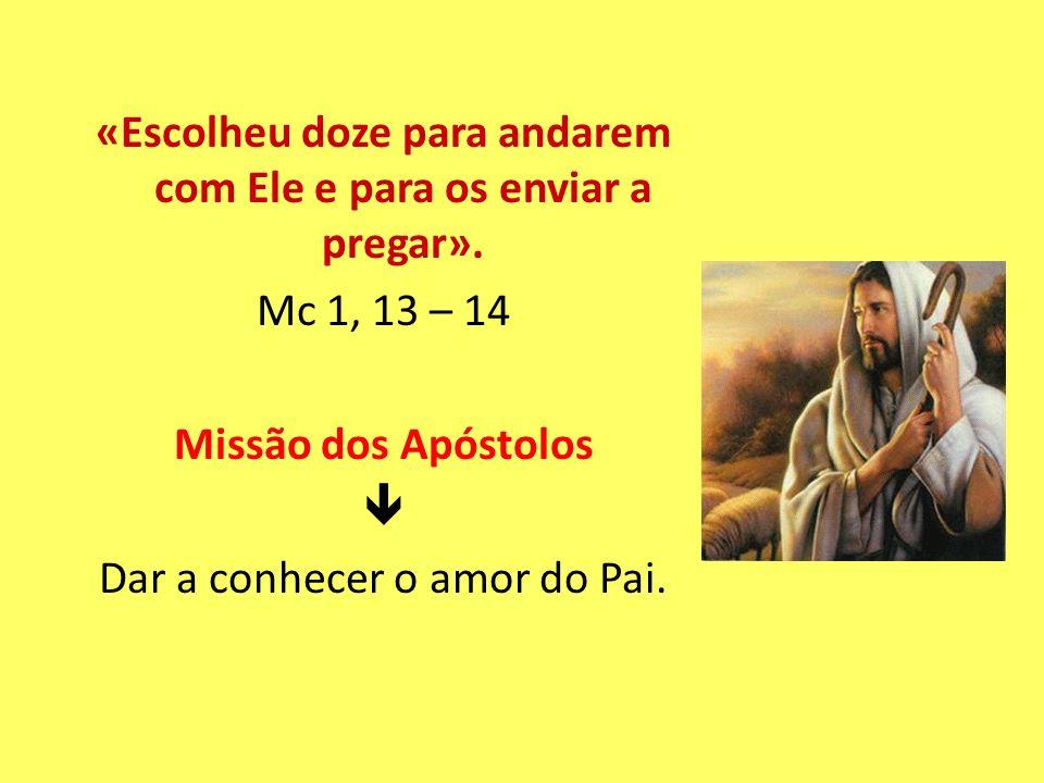 «Escolheu doze para andarem com Ele e para os enviar a pregar». Mc 1, 13 – 14 Missão dos Apóstolos Dar a conhecer o amor do Pai.