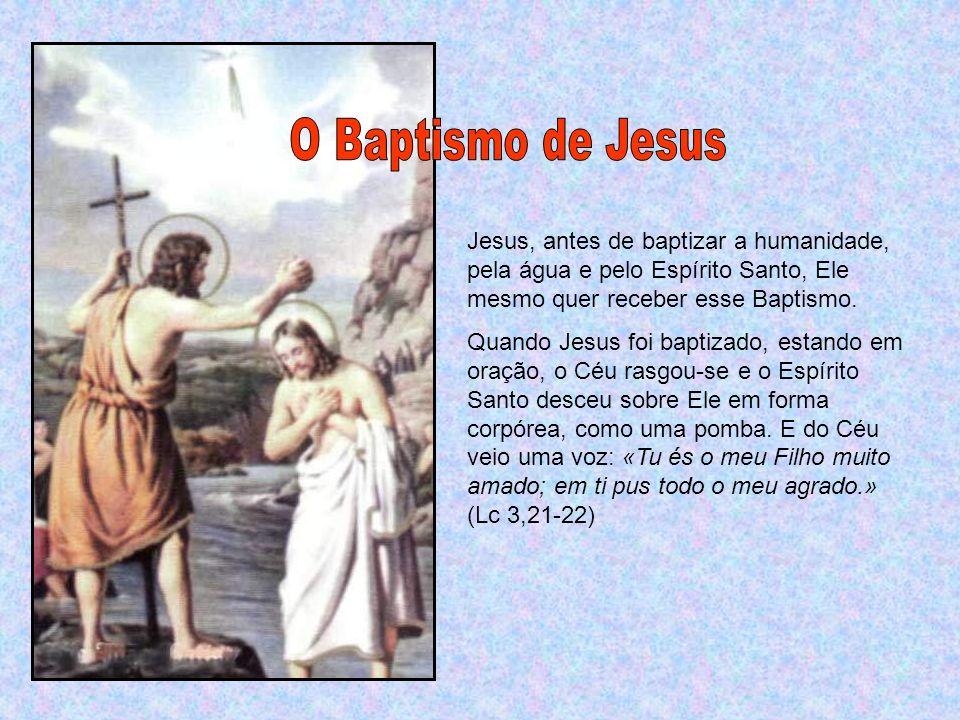 E João testemunhou: «Vi o Espírito que descia do céu como uma pomba e permanecia sobre Ele».
