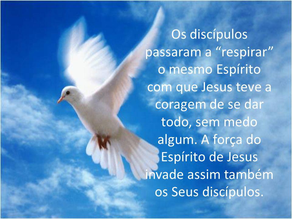 Os discípulos passaram a respirar o mesmo Espírito com que Jesus teve a coragem de se dar todo, sem medo algum. A força do Espírito de Jesus invade as
