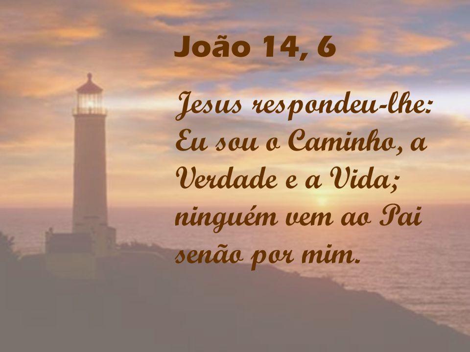 João 14, 6 Jesus respondeu-lhe: Eu sou o Caminho, a Verdade e a Vida; ninguém vem ao Pai senão por mim.
