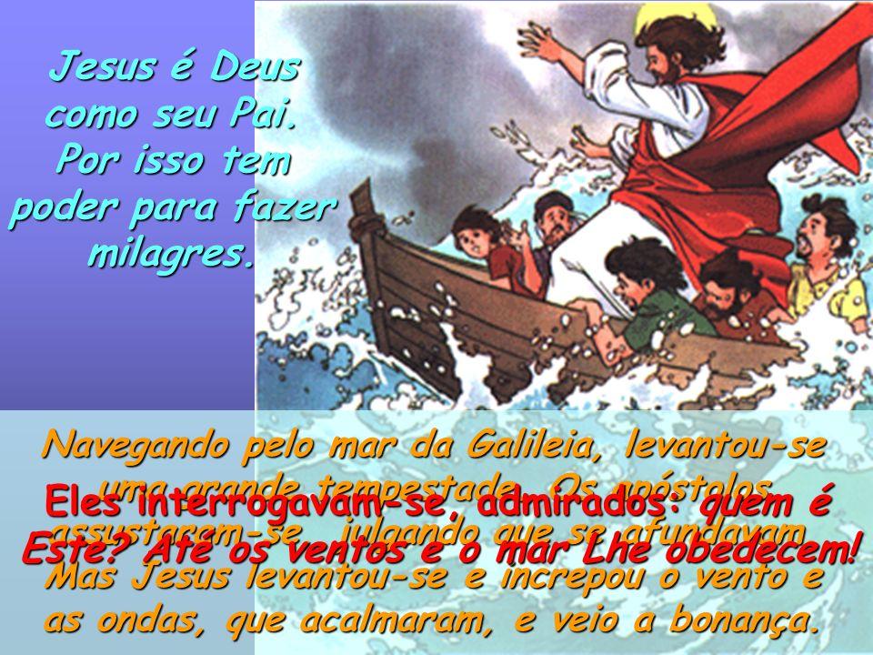 Jesus comparou o Reino de Deus a um tesouro escondido num campo. Quem o encontra, cheio de alegria, vai e vende tudo o que tem e compra o campo. o cam